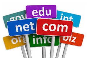 A Free Domain Name?